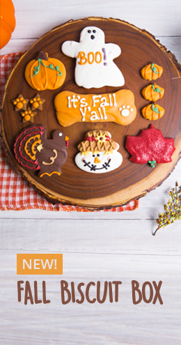 Fall Biscuit Box