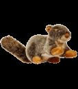 nutsquirrel2